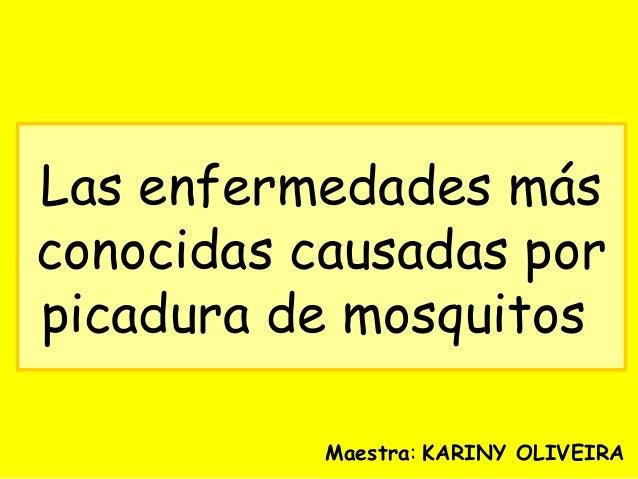 Las enfermedades causadas por picaduras de mosquitos