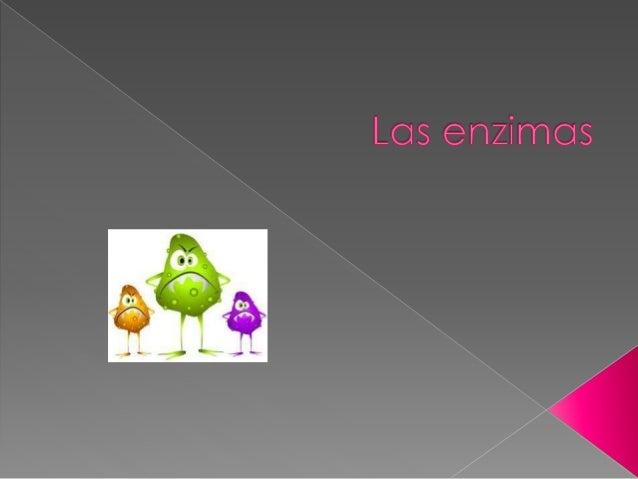  Las enzimas son moléculas de naturaleza proteica y estructural que catalizan reacciones químicas, siempre que sean termo...