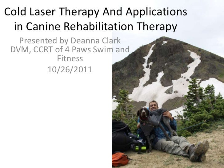Cold Laser Therapy And Applications  in Canine Rehabilitation Therapy   Presented by Deanna Clark DVM, CCRT of 4 Paws Swim...