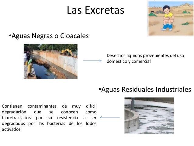 Las Excretas  •Aguas Negras o Cloacales  Desechos líquidos provenientes del uso  domestico y comercial  •Aguas Residuales ...