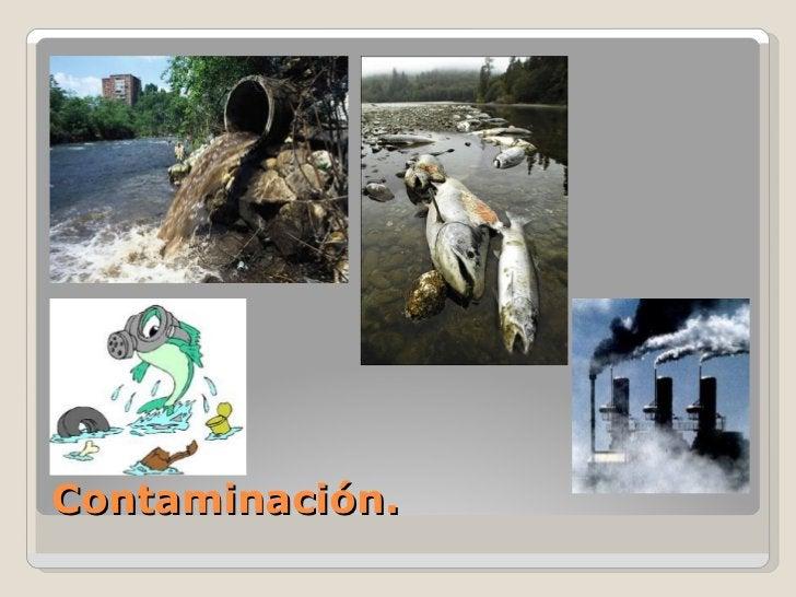 Contaminación.