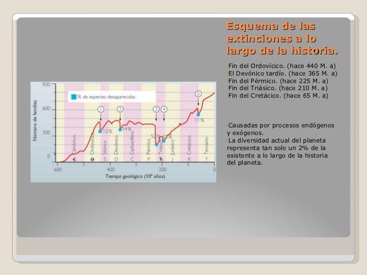 Esquema de las extinciones a lo largo de la historia. <ul><li>Fin del Ordovícico. (hace 440 M. a) </li></ul><ul><li>El Dev...