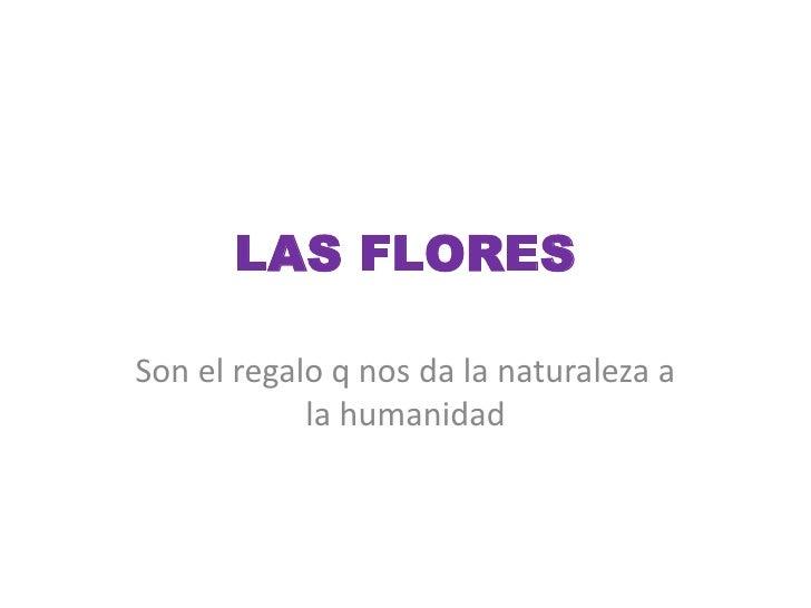 LAS FLORES<br />Son el regalo q nos da la naturaleza a la humanidad<br />
