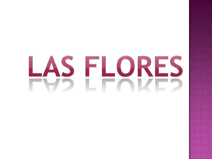 Las flores<br />