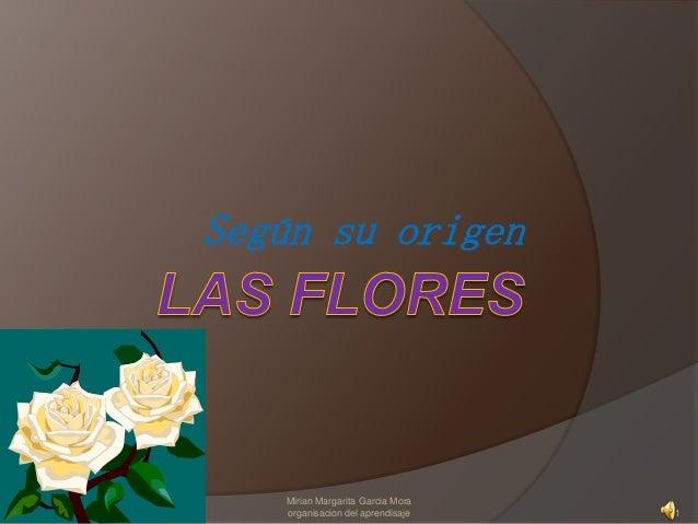 Según su origen 1 Mirian Margarita Garcia Mora organisacion del aprendisaje