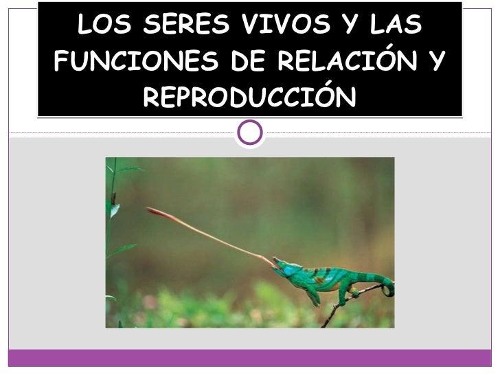 LOS SERES VIVOS Y LAS FUNCIONES DE RELACIÓN Y REPRODUCCIÓN