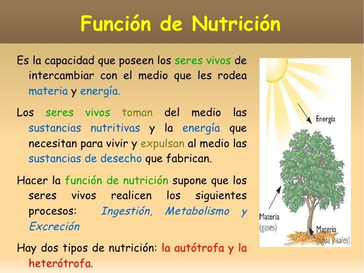 Las funciones vitales