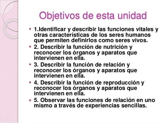 Las funciones vitales Slide 2