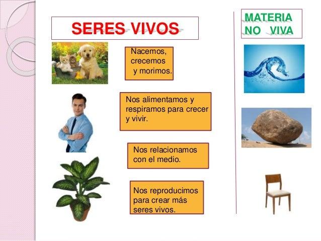 Las funciones vitales Slide 3
