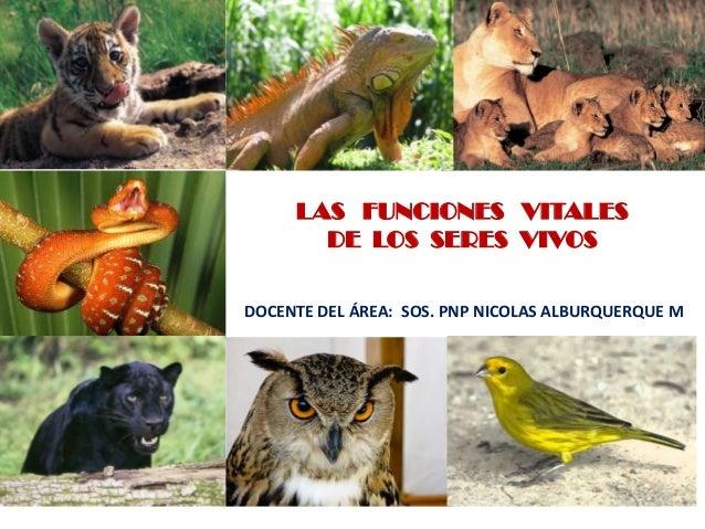 LAS FUNCIONES VITALESDE LOS SERES VIVOSDOCENTE DEL ÁREA: SOS. PNP NICOLAS ALBURQUERQUE M