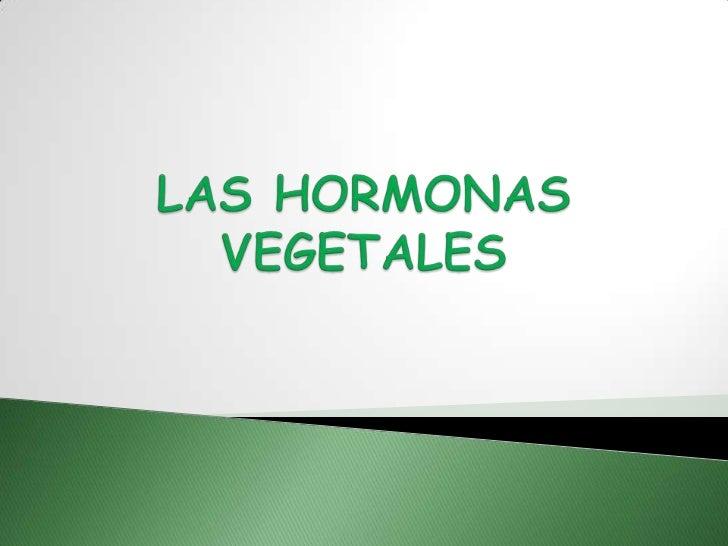    Las hormonas vegetales o FITOHORMONAS son    substancias químicas producidas por células    vegetales de secreción (qu...