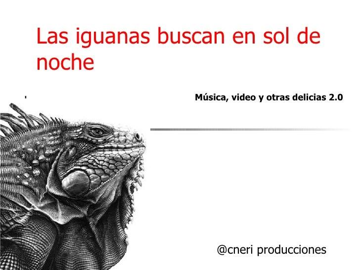 Las iguanas buscan en sol de noche @cneri producciones Música, video y otras delicias 2.0