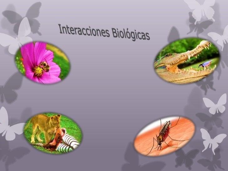 Interaccion biologics de los liquenes pdf
