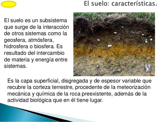Las interfases litoral y suelo for Suelo pedregoso