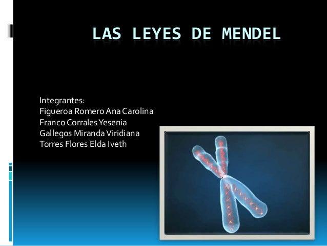 LAS LEYES DE MENDEL Integrantes: Figueroa Romero AnaCarolina Franco CorralesYesenia Gallegos MirandaViridiana Torres Flore...