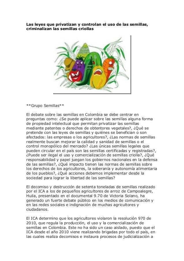 Las leyes que privatizan y controlan el uso de las semillas, criminalizan las semillas criollas **Grupo Semillas** El deba...