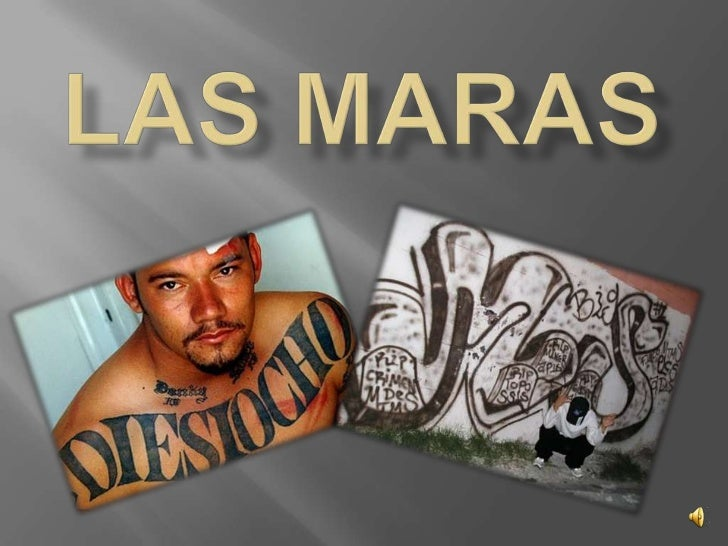 Las maras<br />