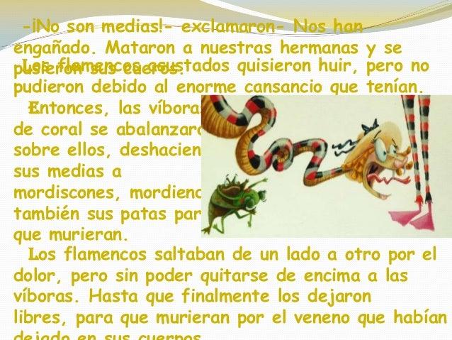 cuento las medias de los flamencos
