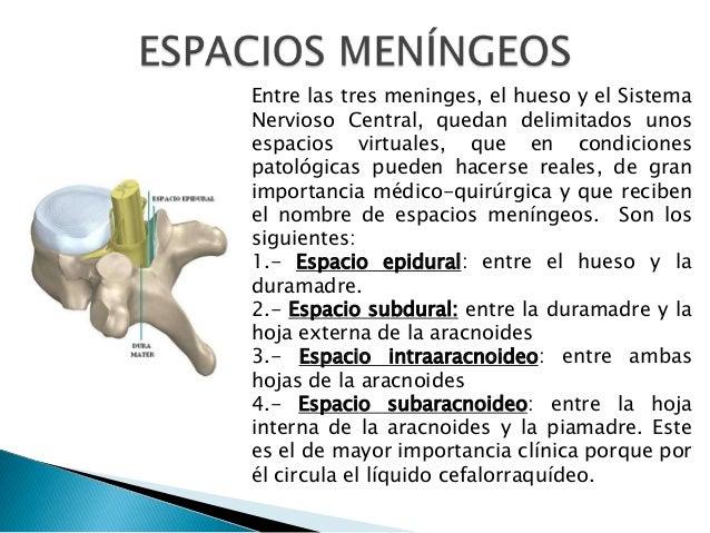 Entre las tres meninges, el hueso y el Sistema Nervioso Central, quedan delimitados unos espacios virtuales, que en condic...