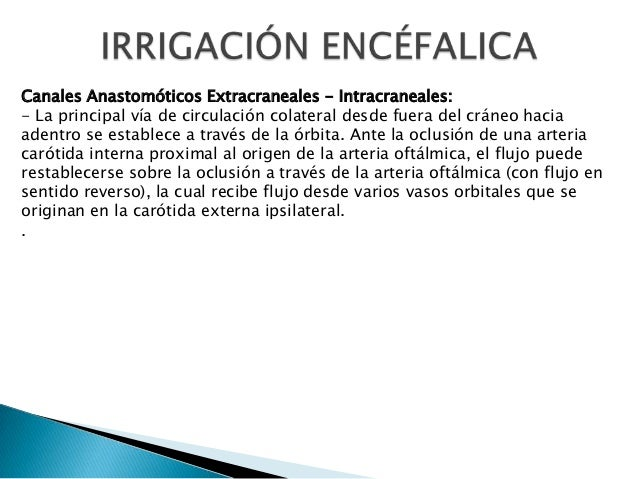 Canales Anastomóticos Extracraneales - Intracraneales: - La principal vía de circulación colateral desde fuera del cráneo ...