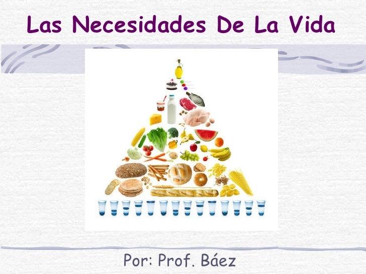 Las Necesidades De La Vida Por: Prof. Báez