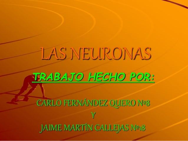 LAS NEURONAS  TRABAJO HECHO POR:  CARLO FERNÁNDEZ QUERO Nº8  Y  JAIME MARTÍN CALLEJAS Nº18