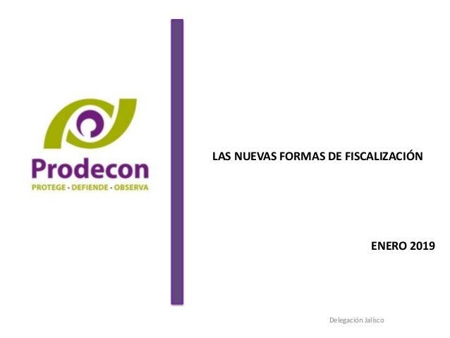 LAS NUEVAS FORMAS DE FISCALIZACIÓN ENERO 2019 Delegación Jalisco