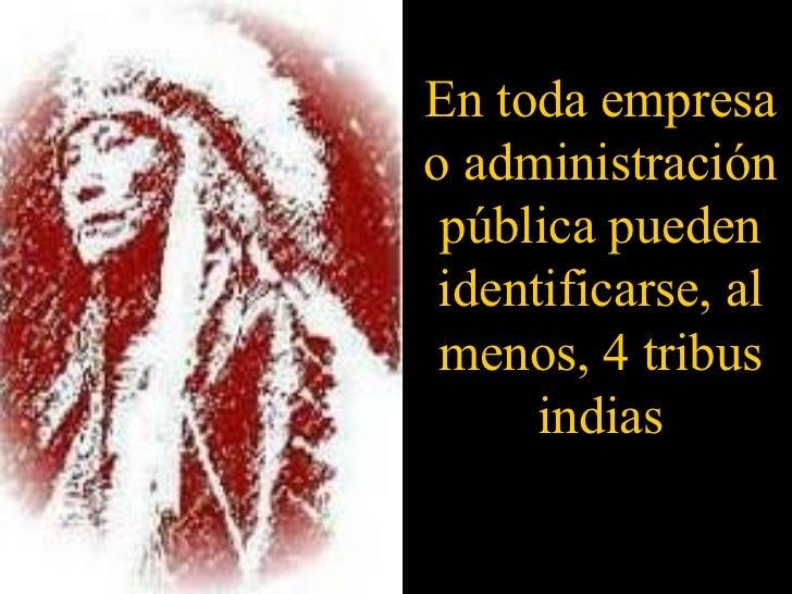 En toda empresa o administración pública pueden identificarse, al menos, 4 tribus indias