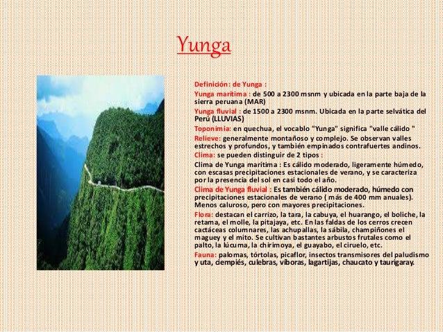 Las ocho regiones naturales del perú Slide 3