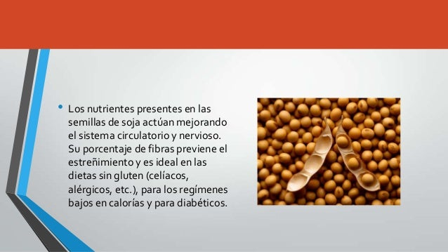 La soja Slide 3