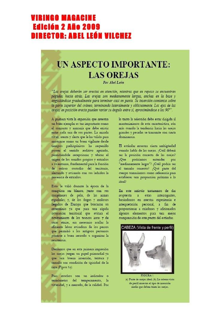 VIRINGO MAGACINE Edición 2 Año 2009 DIRECTOR: ABEL LEÓN VILCHEZ