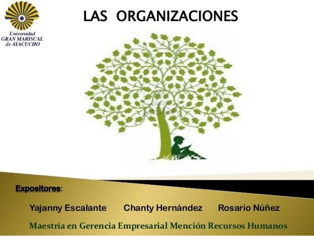 LAS ORGANIZACIONES Expositores: Yajanny Escalante Chanty Hernández Rosario Núñez Maestría en Gerencia Empresarial Mención ...
