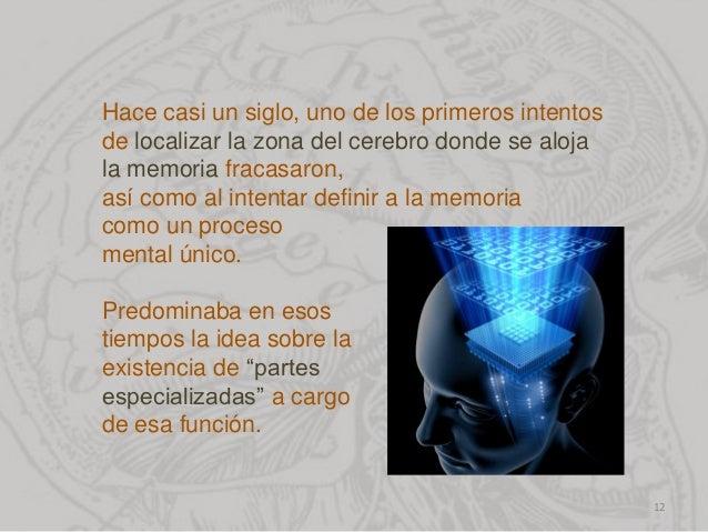 Hace casi un siglo, uno de los primeros intentos de localizar la zona del cerebro donde se aloja la memoria fracasaron, as...