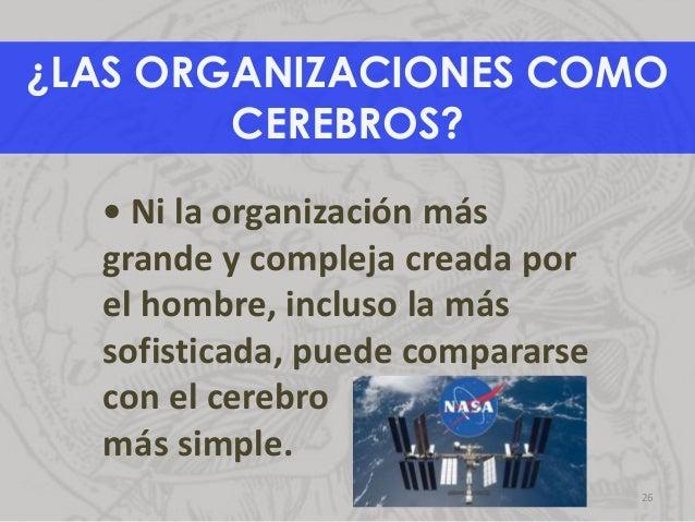 ¿LAS ORGANIZACIONES COMO CEREBROS? • Ni la organización más grande y compleja creada por el hombre, incluso la más sofisti...