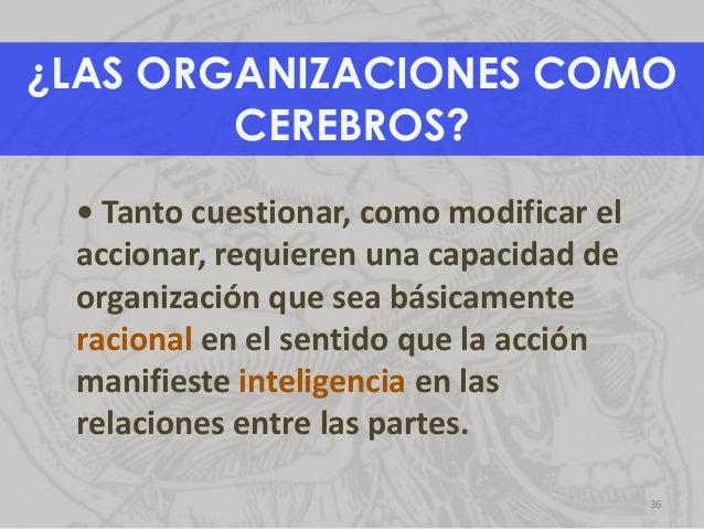 • Tanto cuestionar, como modificar el accionar, requieren una capacidad de organización que sea básicamente racional en el...