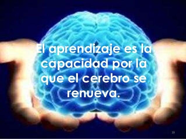 El aprendizaje es la capacidad por la que el cerebro se renueva. 39