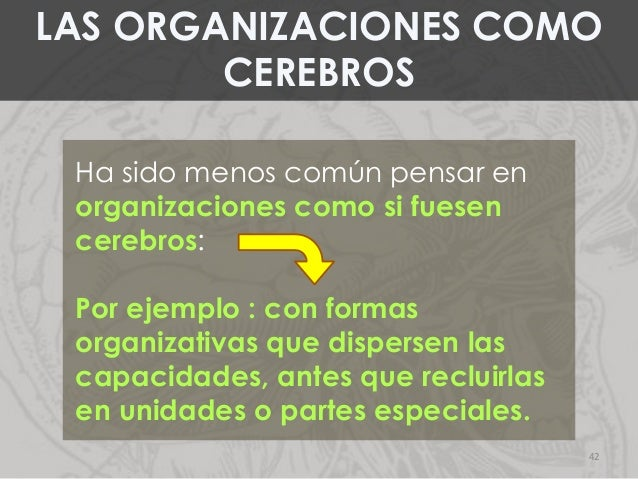 Ha sido menos común pensar en organizaciones como si fuesen cerebros: Por ejemplo : con formas organizativas que dispersen...