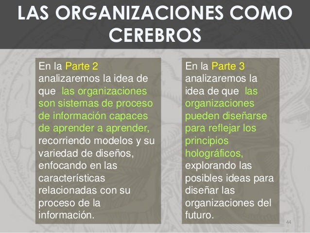En la Parte 2 analizaremos la idea de que las organizaciones son sistemas de proceso de información capaces de aprender a ...