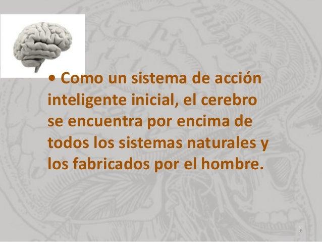 • Como un sistema de acción inteligente inicial, el cerebro se encuentra por encima de todos los sistemas naturales y los ...