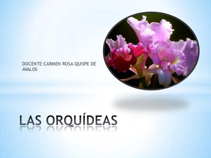 DOCENTE:CARMEN ROSA QUISPE DEAVALOS