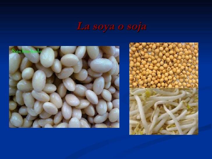La soya o soja