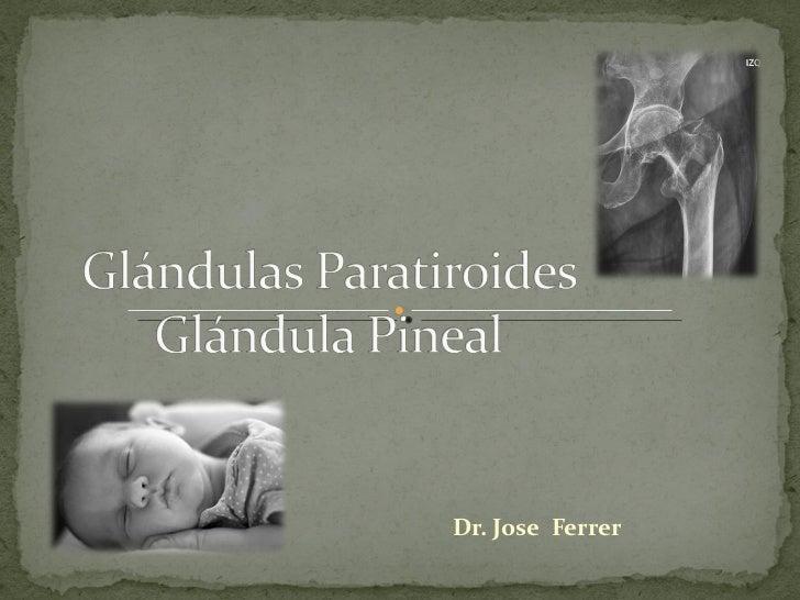 Dr. Jose  Ferrer