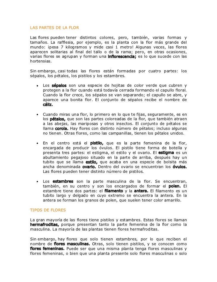 LAS PARTES DE LA FLOR<br />Lasflorespuedentener distintos colores, pero, también, varias formas y tamaños. La rafflesia...