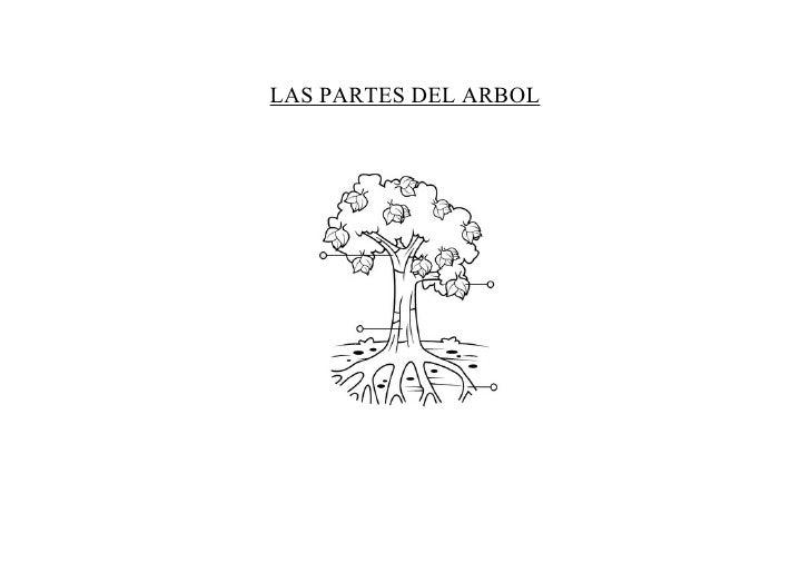 LAS PARTES DEL ARBOL