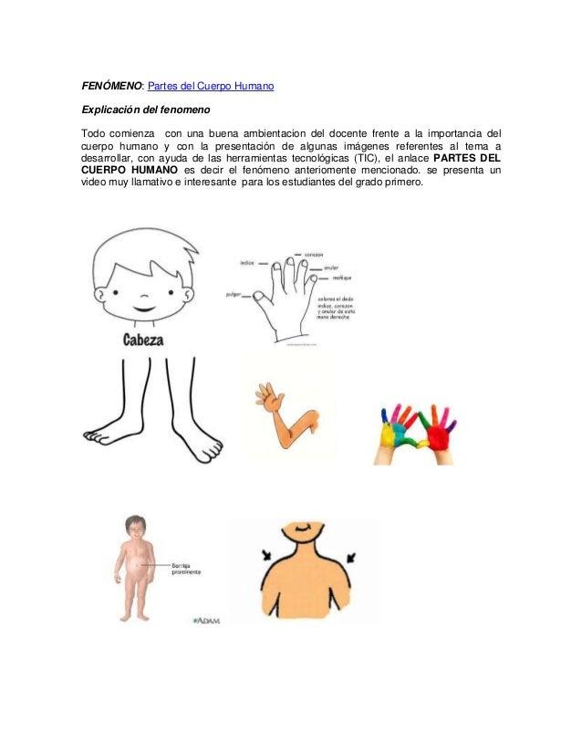 Las partes del cuerpo humano modelo TPACK