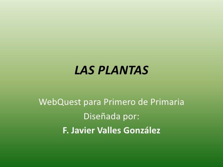 LAS PLANTAS  WebQuest para Primero de Primaria           Diseñada por:     F. Javier Valles González