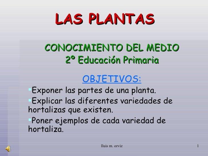 LAS PLANTAS CONOCIMIENTO DEL MEDIO 2º Educación Primaria <ul><li>OBJETIVOS: </li></ul><ul><li>Exponer las partes de una pl...