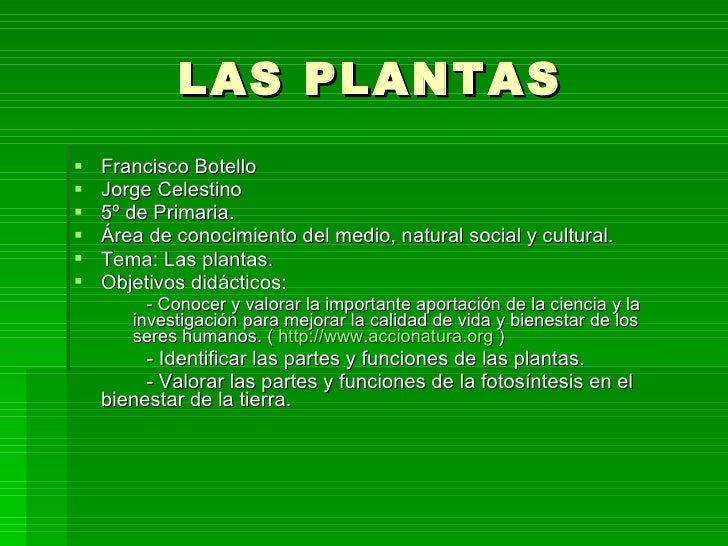 LAS PLANTAS <ul><li>Francisco Botello </li></ul><ul><li>Jorge Celestino </li></ul><ul><li>5º de Primaria.  </li></ul><ul><...