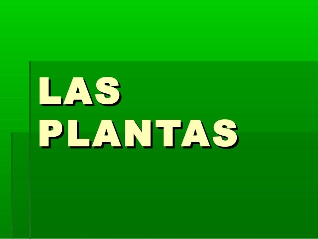 LASLAS PLANTASPLANTAS