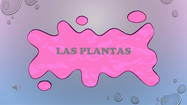 Las plantas son seres vivos porque nacen, crecen, se reproducen y mueren. Las plantas necesitan agua, aire, luz y tierra...